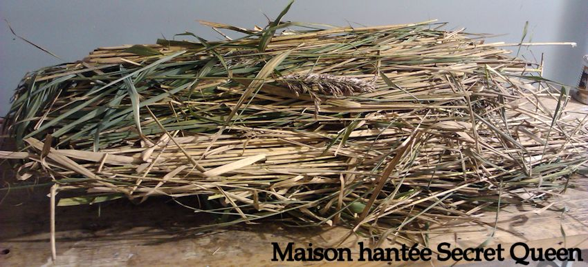 Balais de sorci re maison hant e secret queen - Decoration halloween maison hantee ...